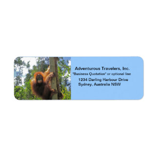 Travel Agent Adventure Tours Return Address Label