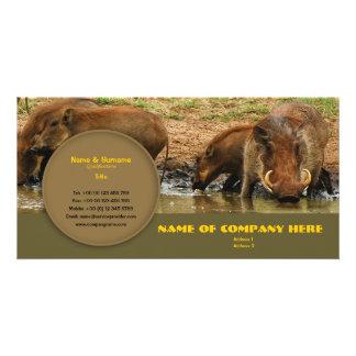 Travel agents, game lodges, hunting farms, safari custom photo card