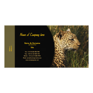 Travel agents, game lodges, hunting farms, safari picture card