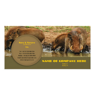Travel agents, game lodges, hunting farms, safari photo card