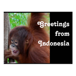 Travel Greetings from Indonesia Postcard
