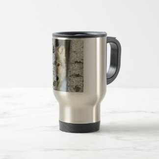 travel mug with photo of gray wolf in birch trees