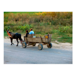 Travelling by horse and cart, Romania Postcard