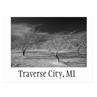 Traverse City Cherry Orchard Postcard