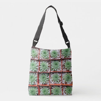 Trays of Succulents Tote