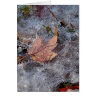 """Treasure in Ice"" Card"