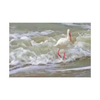 Treasure Island Florida Crane Canvas Print