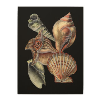 Treasures of the Sea Wood Wall Decor