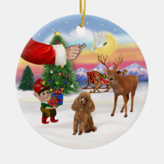 Treat for a Apricot Poodle (Toy) Round Ceramic Decoration