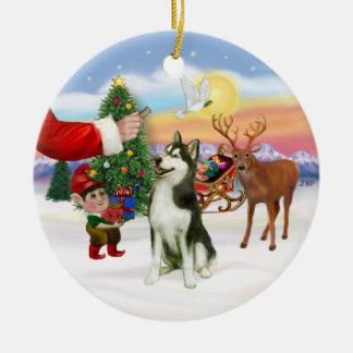 Treat for a Siberian Husky (#3) Round Ceramic Decoration