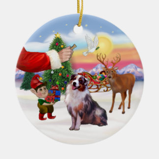 Treat for an Australian Shepherd (merle) Ceramic Ornament