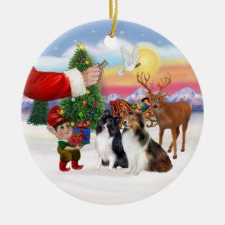 Treat for two Shetland Sheepdogs Ceramic Ornament