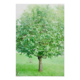 Tree Abstract Watercolor Impressionist Painting Poster