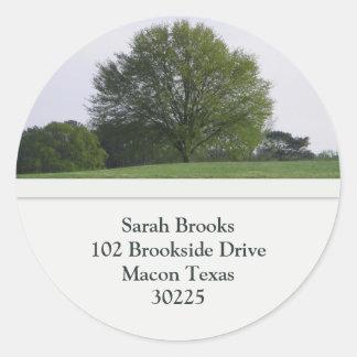 Tree Address Labels Stickers