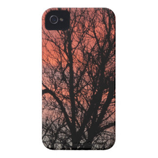Tree against Red Sky iPhone 4 Case-Mate Cases