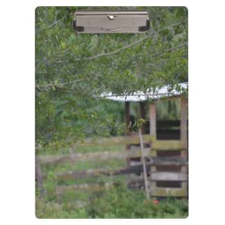 tree and old barn florida photo clipboard
