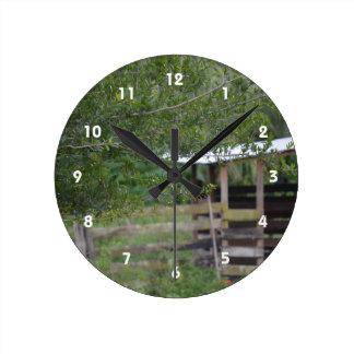 tree and old barn florida photo round clock