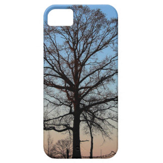Tree at Dusk iPhone 5 Barely There iPhone 5 Case
