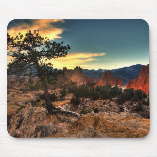 Tree at Sunrise Mouse Pads