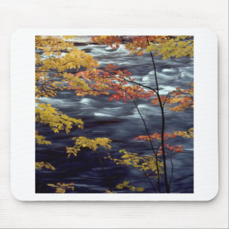 Tree Autumn A Rushing River Mouse Pads