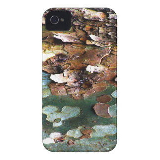 Tree Bark BlackBerry Bold Case-Mate Barely There Case-Mate iPhone 4 Case