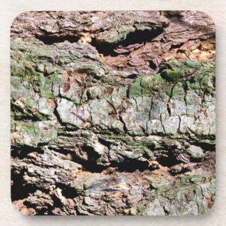 Tree bark coasters