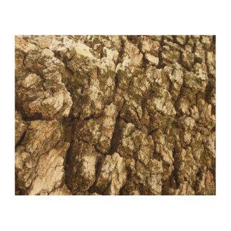 Tree Bark II Natural Abstract Textured Design Wood Wall Art