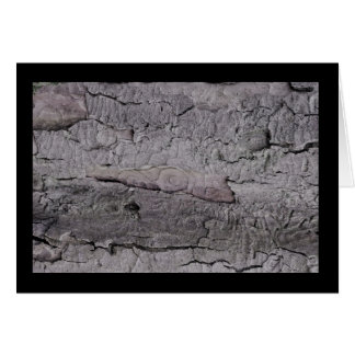 Tree Bark Notecard