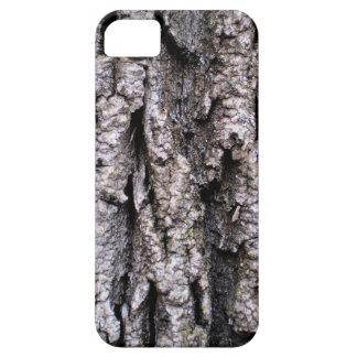 Tree Bark Photography iPhone 5 Case