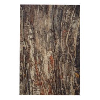 Tree Bark Texture Wood Canvases