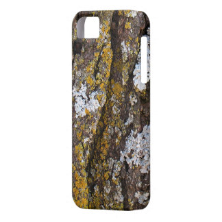 Tree Bark With Lichens iPhone 5 Cases