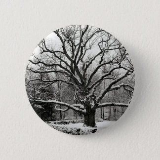 Tree Bedford Oak New York City 6 Cm Round Badge