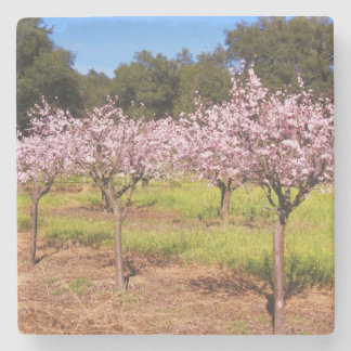 Tree Blossom Coaster Stone Coaster