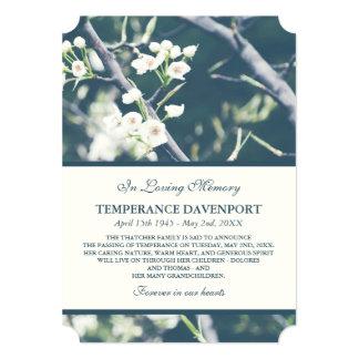 Tree Blossom | Spring Memorial Announcement