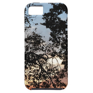 Tree Branch Silhouette iPhone 5 Cases