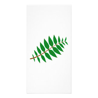 Tree Branch with Leaves Picture Card
