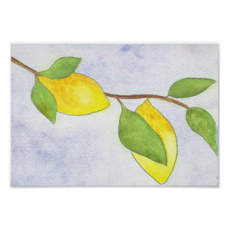 Tree Branch with Lemons and Leaves in Watercolor Poster