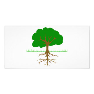 Tree Branches and Roots Photo Card