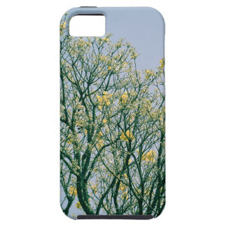 Tree Branches and Yellow Blossoms iPhone 5 Covers