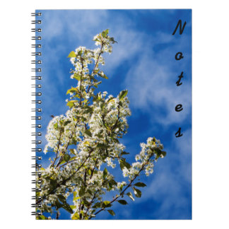 Tree Branches Full Of White Flowers Notebooks