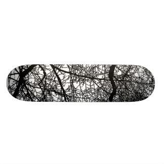 Tree Branches on White Skate Decks