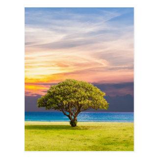 Tree by the Ocean Postcard