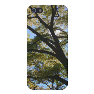 Tree Canopy Case For The iPhone 5