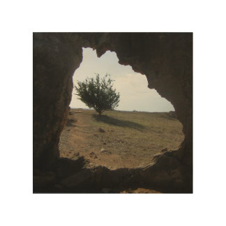 Tree Cave Travel Photograph Wood Wall Art Wood Canvas
