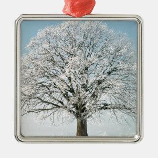 Tree Change Of Season Christmas Ornament