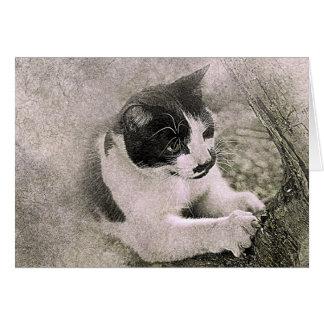 Tree Climbing Cat | Abstract | Watercolor Card