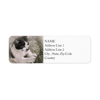 Tree Climbing Cat | Abstract | Watercolor Return Address Label