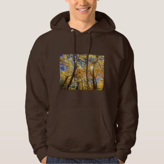 Tree Fall Nature Landscapes Sky Destiny Destiny'S Hoodie