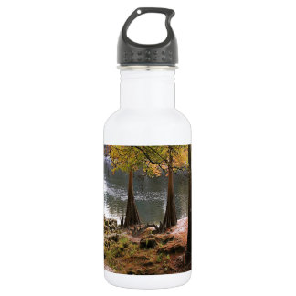 Tree Fall On Calm River 532 Ml Water Bottle