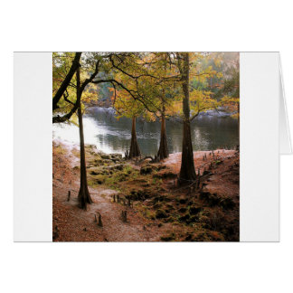 Tree Fall On Calm River Card